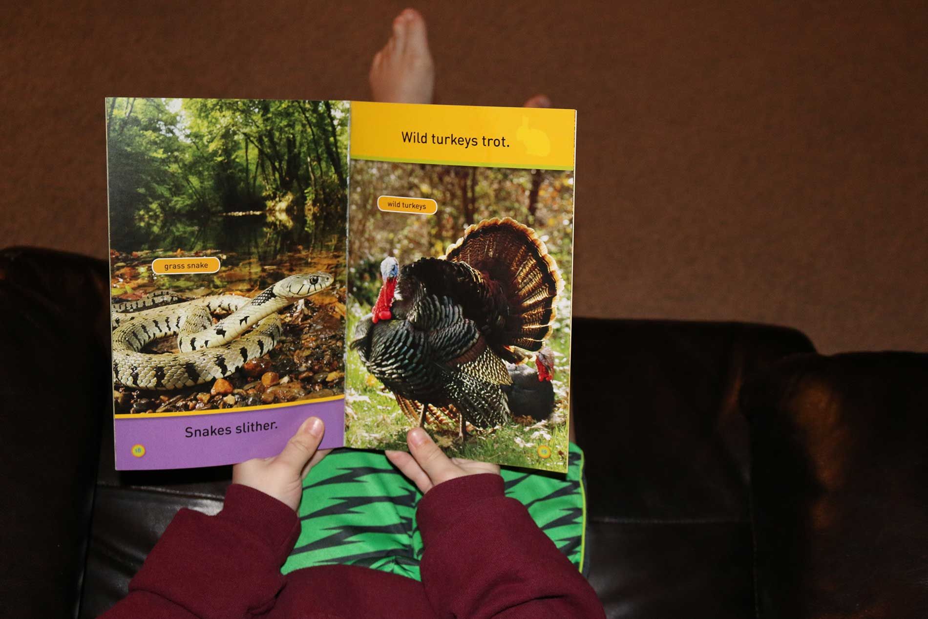 Reese Looking Through His New National Geographic Kids Book